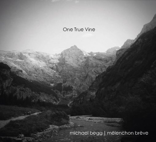 one true vine michael begg sleeve